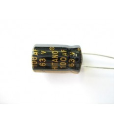 100uF 63V Electrolytic Capacitor