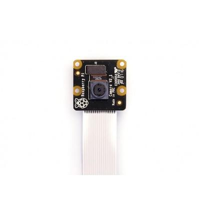 Raspberry Pi NoIR Camera - V2