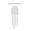 RGB LED 10mm Through Hole Common Anode